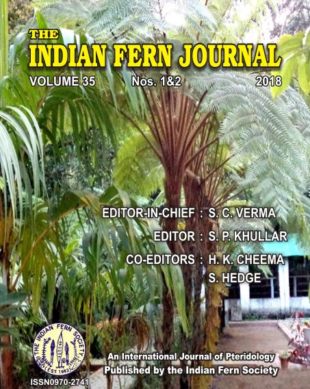 indianfernjournal